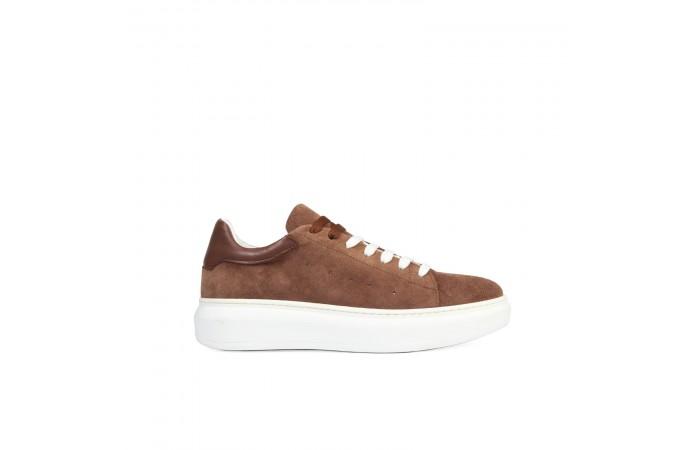 Sneaker Ant Camel